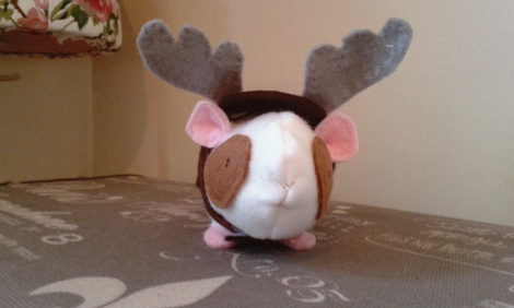 Ron in his stag costume.